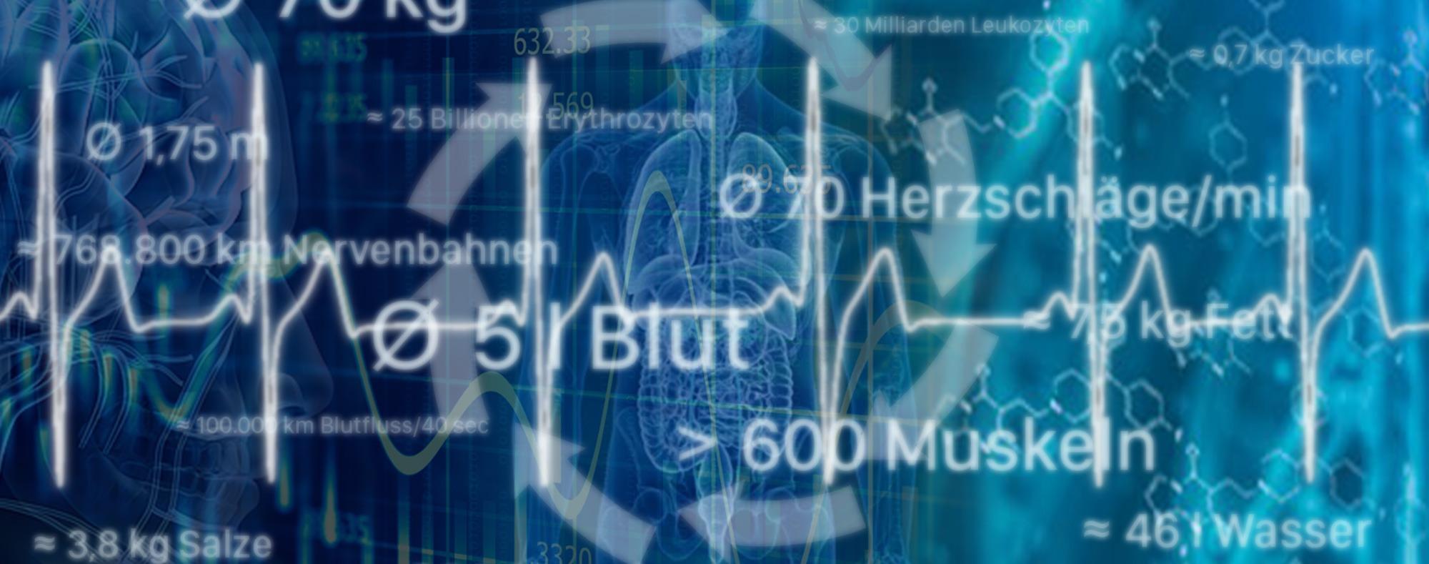 Biofeedback und HRV